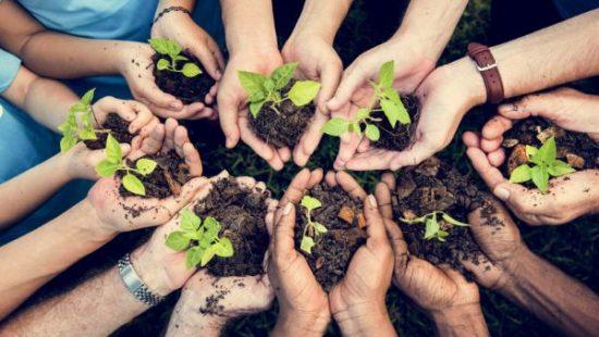 Responsabilidade ambiental - Instituto Imediatta